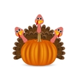 Turkeys cartoon with pumpkins on the feast day vector image vector image