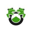 two frog reptile logo design vector image