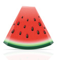 watermelon 04 vector image vector image