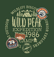 wildlife outdoor adventure kids camp vector image