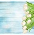 bouquet white tulips eps 10 vector image vector image