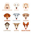 cute dog icons set v vector image