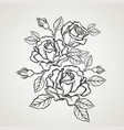 hand drawn rose flower in vintage style vector image vector image