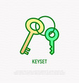 keyset line icon symbol of security protection vector image