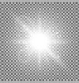 light circle with stardust white color vector image vector image