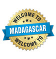 madagascar 3d gold badge with blue ribbon vector image vector image