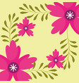 pink flowers branches nature floral vector image
