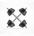 realistic detailed 3d black dumbbell set vector image