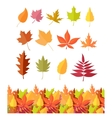 Set of Tree Leaf Icons Autumn Leaves Isolated vector image