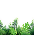 tropical paper leaves background vector image vector image
