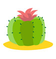 blooming cactus colored plants logo on a white vector image vector image