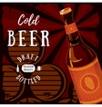 Glassware bottle of beer with barrels in cellar vector image vector image