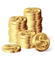 Gold coins vector image vector image