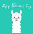 happy valentines day llama alpaca animal face vector image vector image