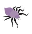 Mite skin parasite vector image
