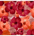 Red hibiscus flower Seamless floral background vector image vector image