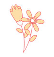 two flowers decorative spring image vector image