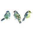 Watercolor bird collection for your design vector image vector image