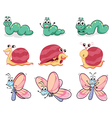 A caterpillar butterfly and a snail vector image vector image