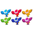 birds with six colors on white background vector image vector image