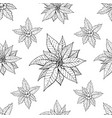seamless pattern with traditional homeplant vector image