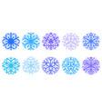 set winter snowflakes vector image
