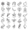 spices condiments sign black thin line icon set vector image vector image