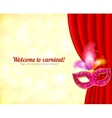 Theater and carnival background with mask vector image