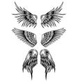 wings set 7 vector image