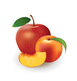 apple and peach on white background vector image