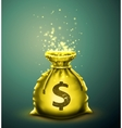 bag money vector image
