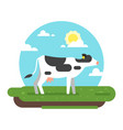 cow graze in a field vector image vector image
