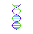 dna icon dna graphic vector image vector image