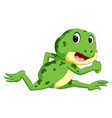 green frog with happy smile vector image