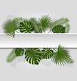 green summer tropical header with exotic palm vector image vector image