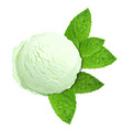 mint green ice cream with mint leaves isolated on vector image vector image
