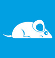 pet mouse icon white vector image