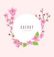 sakura blossom peach cherry flowers pink floral vector image vector image