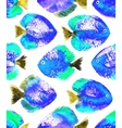 seamless pattern with watercolor discus vector image vector image