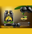 traditional black olives canned in glass vector image