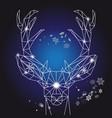 christmas geometric outline portrait a deer vector image vector image