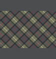 classic tartan check plaid seamless pattern vector image vector image