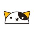 Kitty head vector image