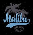 malibu surf rider beach california surfing surf vector image vector image