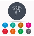 Palm tree icon Travel or vacation symbol vector image vector image