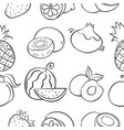 pattern of fruit hand draw collection vector image