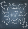 set of farm animals icons and lettering vector image