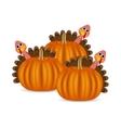 Turkeys cartoon with pumpkins on the feast day vector image vector image