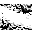 background bats vector image vector image