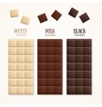 Chocolate Bar Blank vector image